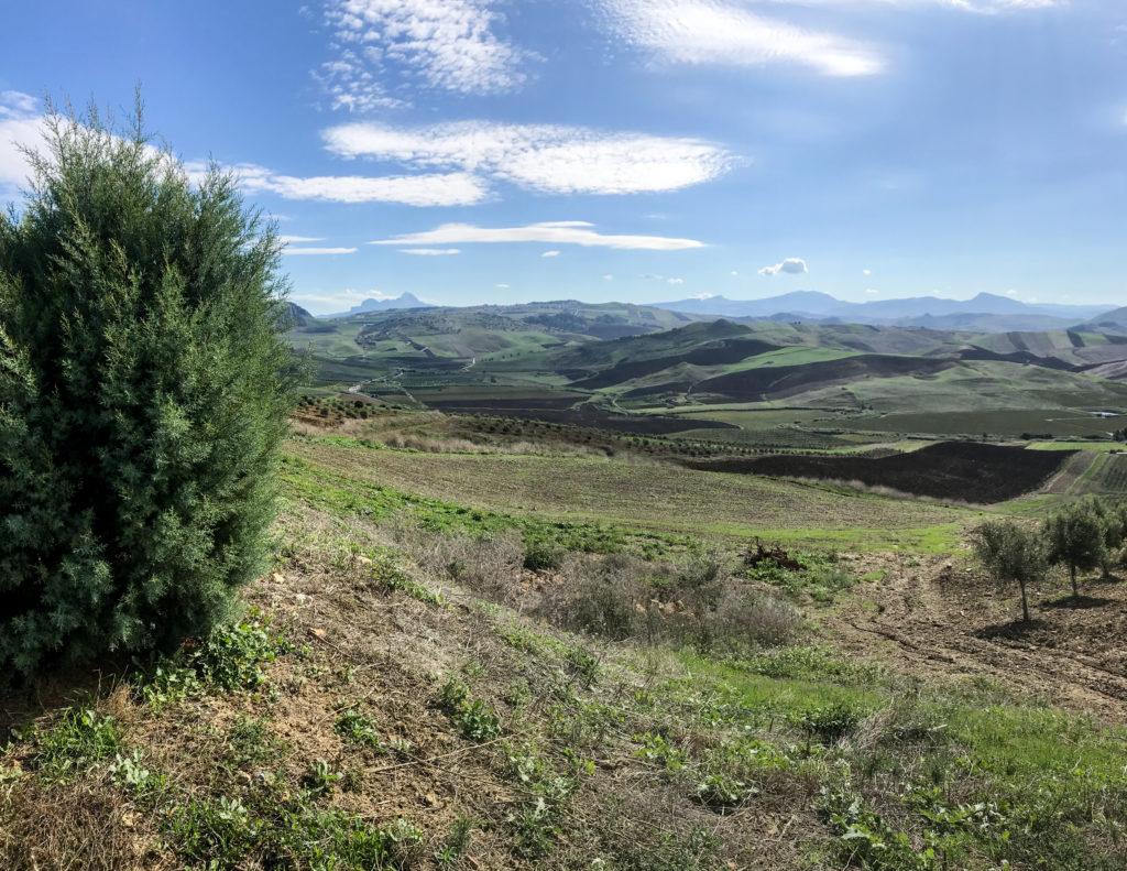 Panorama della valle del Belice