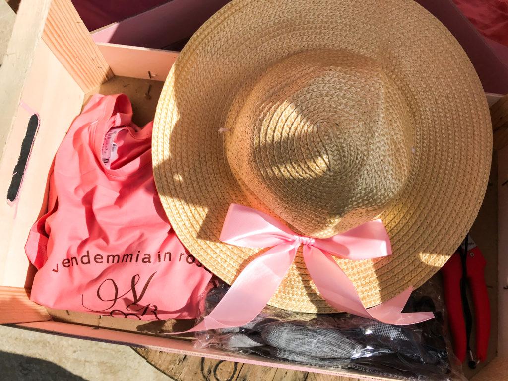 Il kit della vendemmia in rosa di Terre di Gratia